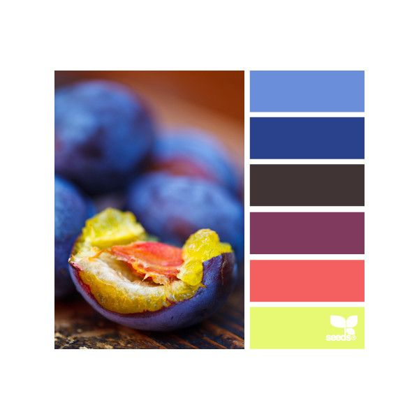 Design Seeds ❤ liked on Polyvore featuring design seeds, colors, backgrounds and palettes