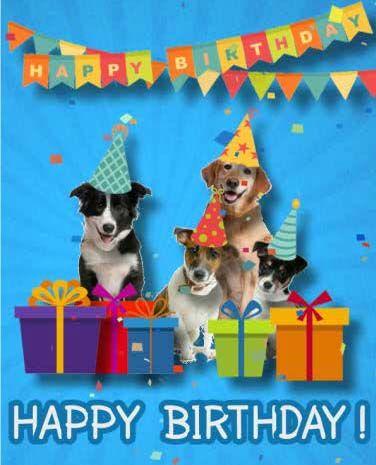 ecards přání k narozeninám Fun Birthday e  card ! | HBD | Pinterest ecards přání k narozeninám