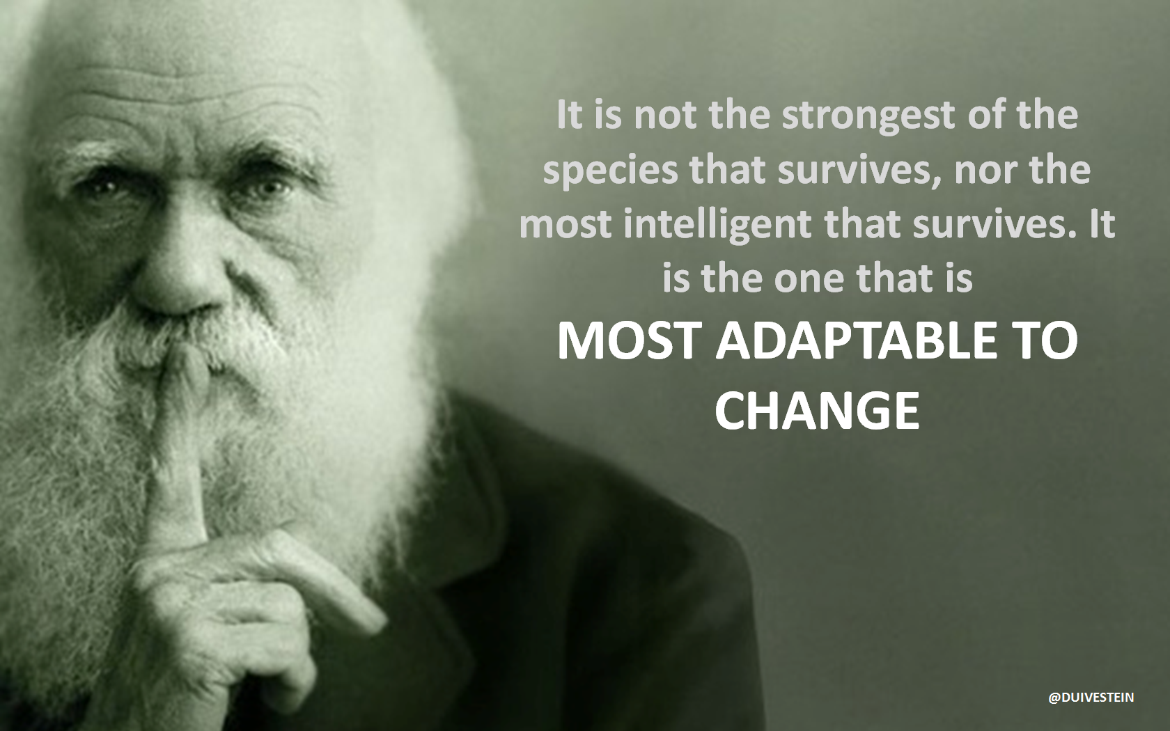 "The famous quote by Charles Darwin ""It is not the"