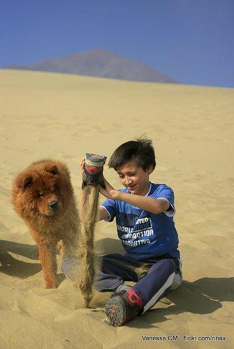 Un poco de arena