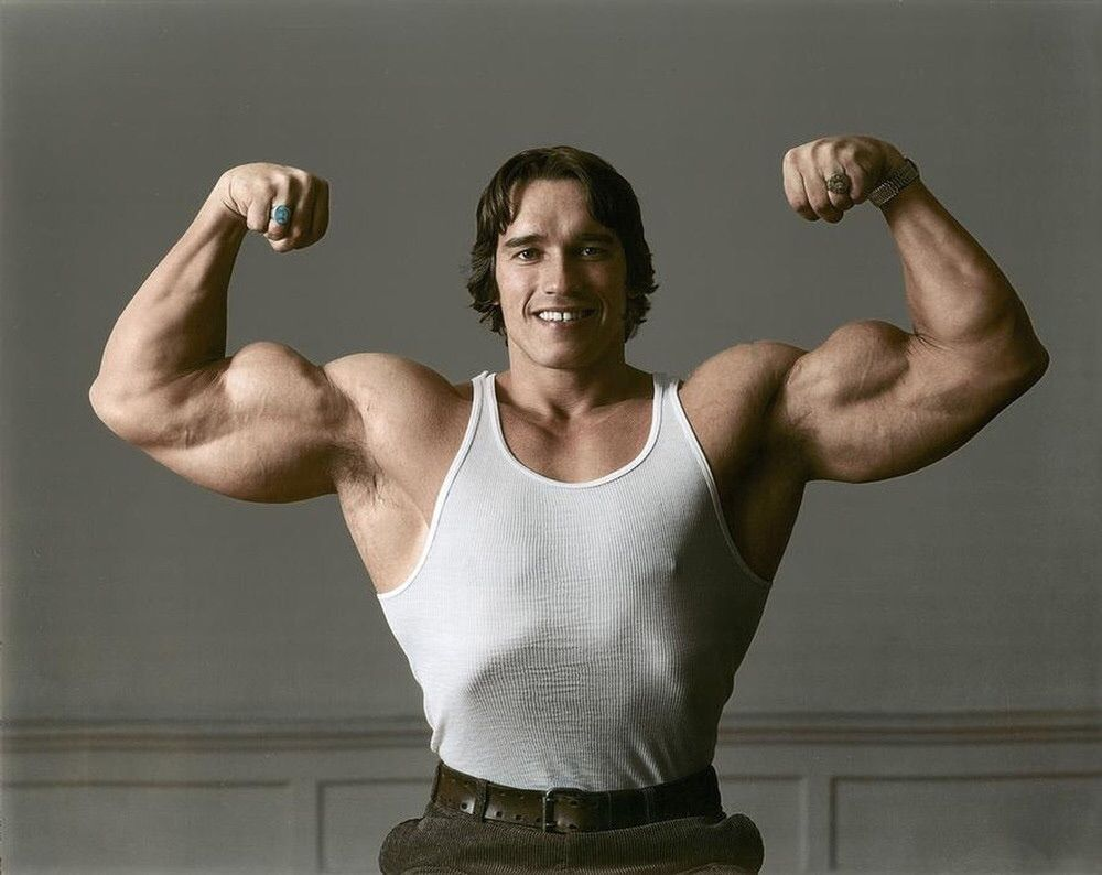 Cool Arnold Photo Take 2 Bodybuilding Fitness Gym Fitfam