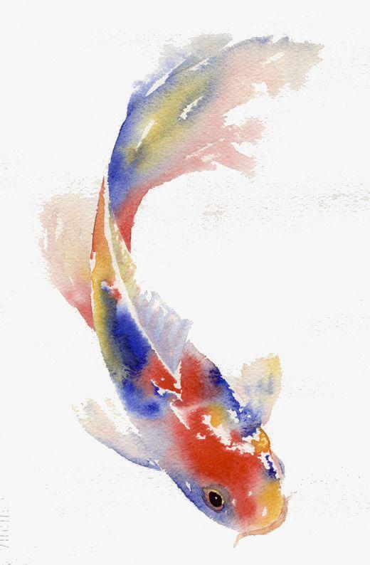 Colored Carp Png And Psd Koi Painting Koi Art Watercolor Fish