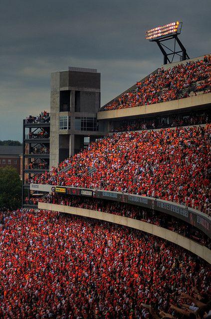 Sanford Stadium Crowd