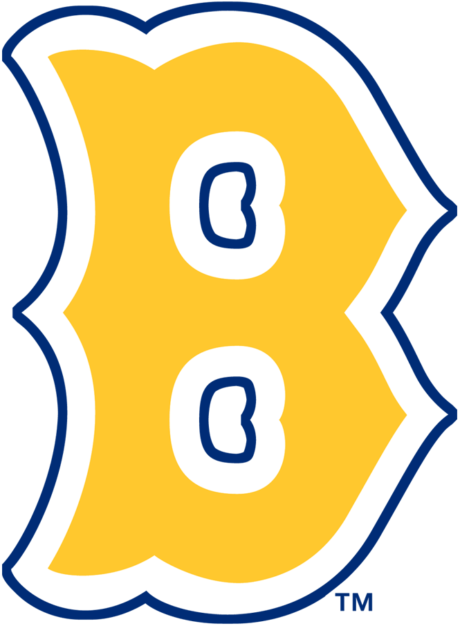 Boston Bees Primary Logo Logos Mlb Team Logos Sports Logo