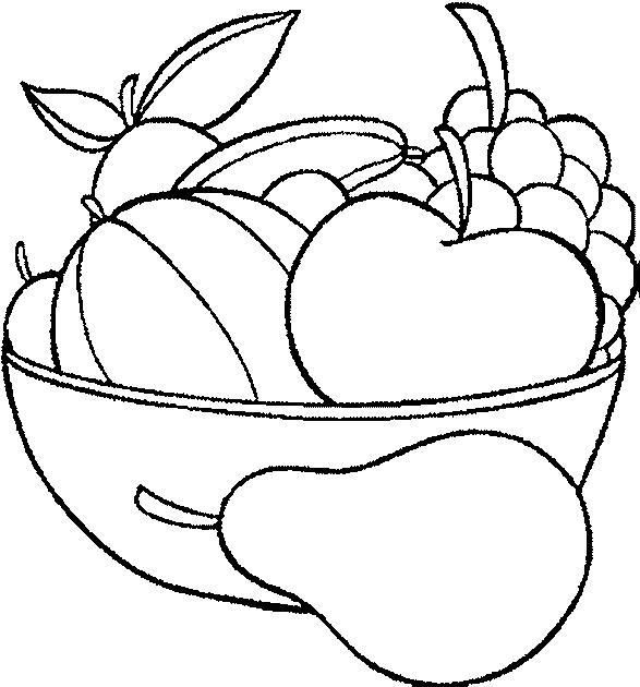 All Fruits And Flowers To Paint Search Results Para Colorear