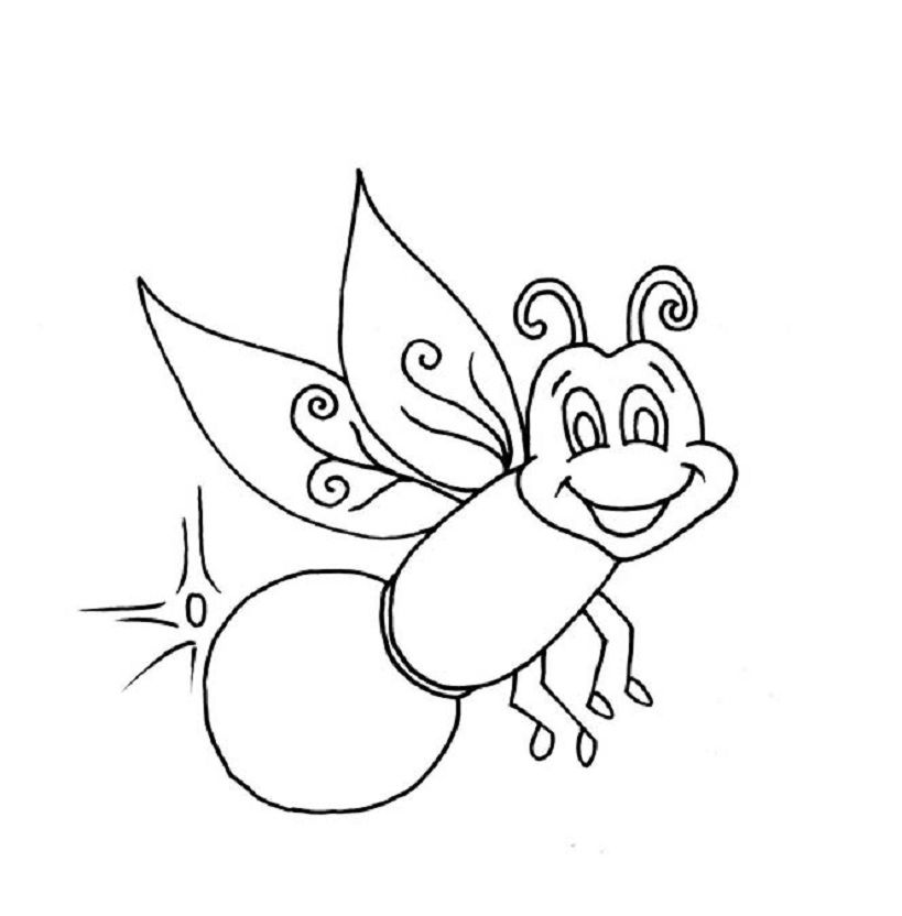 Pin By Rochelle On Insects Coloring Pages Firefly Images Colouring Pages