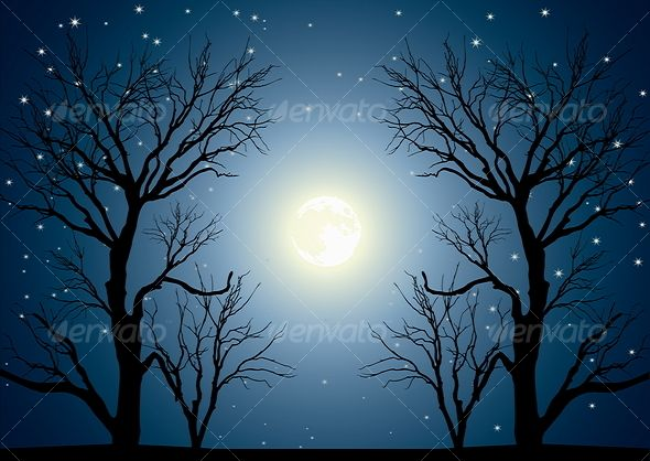 Landscape With Trees And Full Moon Moon Skies Stars Night Vector Dark Blue Backgrounds Illustration Painti Nature Vector Landscape Trees Blue Painting