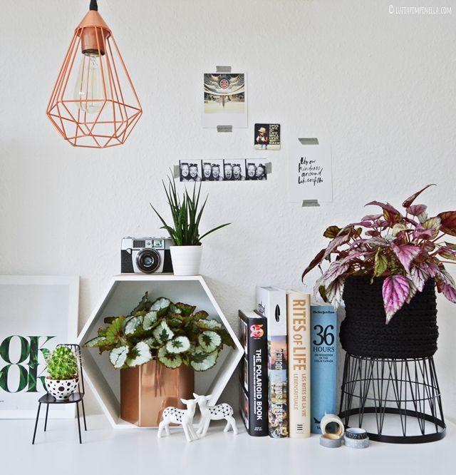 interior | blattbegonien pflanzenfreude mit pflegetipps | luziapimpinella.com #pflanzenfreude #urbanjunglebloggers