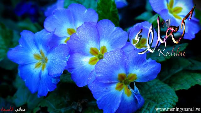 معنى اسم كحلاء وصفات حاملة هذا الاسم Kahlaa Plants