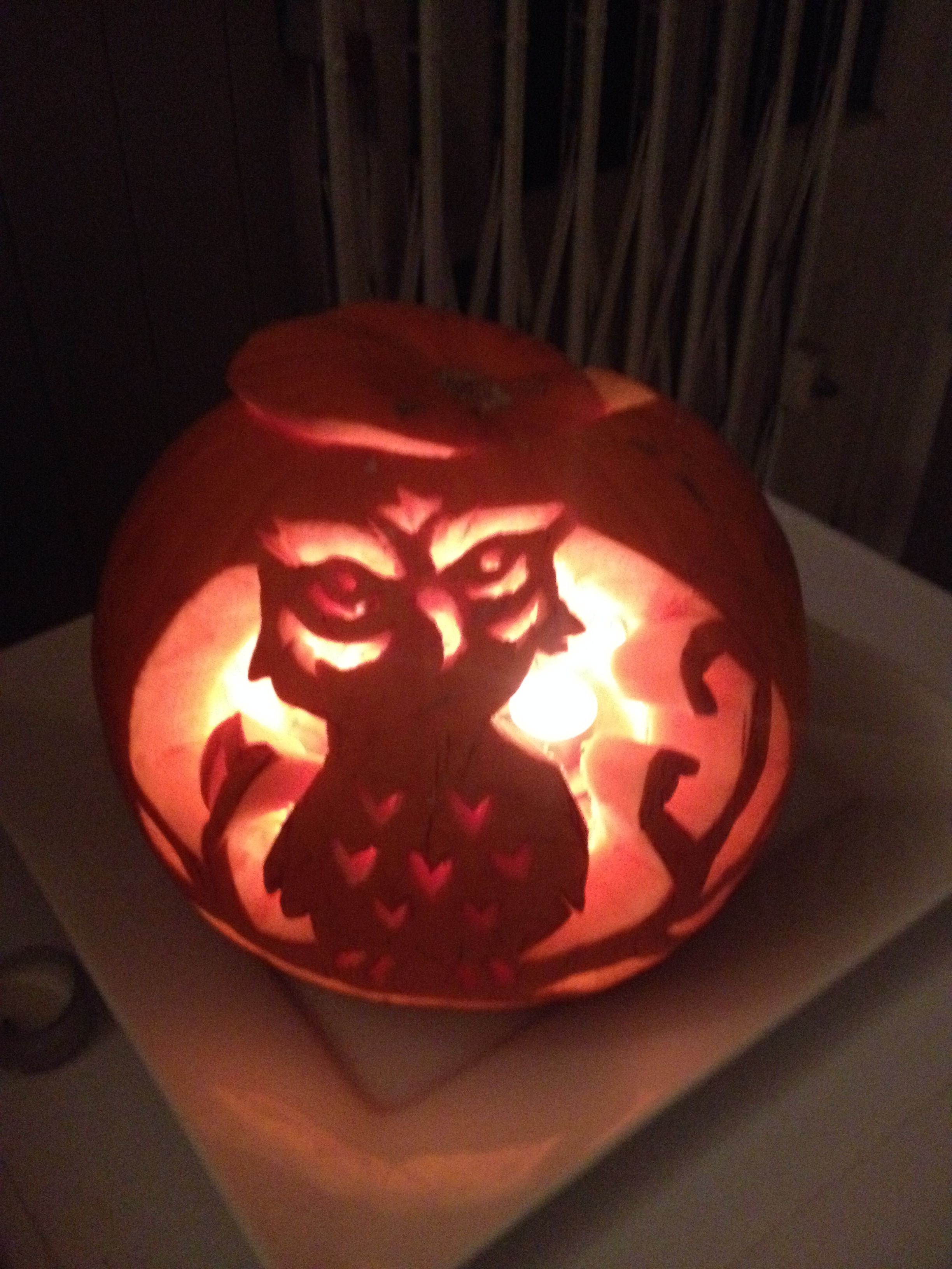 best halloween pumpkin carvings images on pinterest