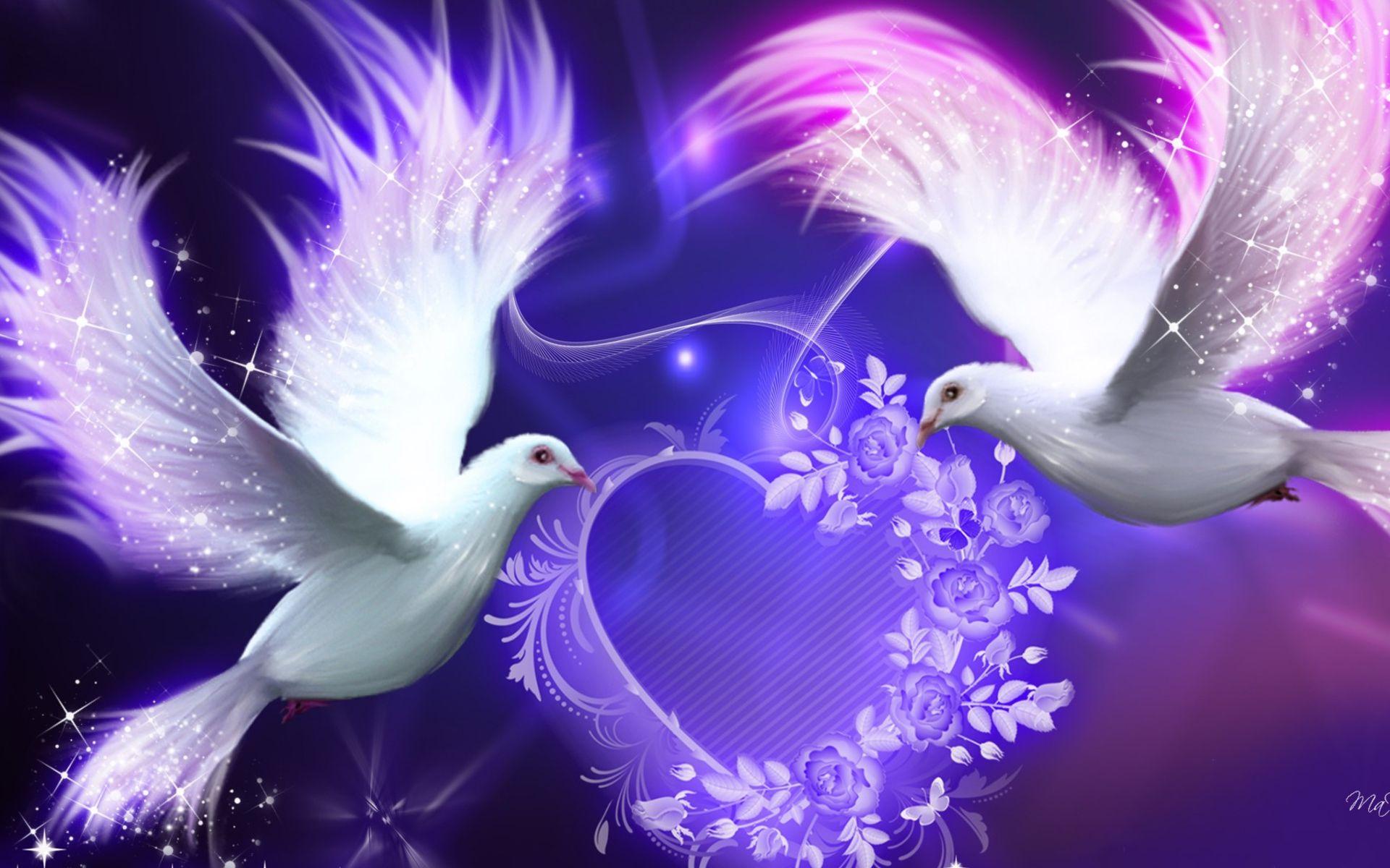 Dove Pictures Bird Wallpaper Love Birds Wallpaper