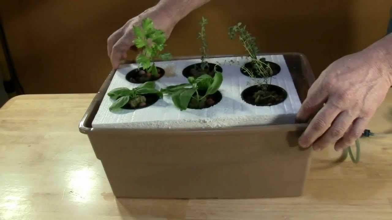 Build a Lettuce Raft | gardening ideas | Pinterest | Aquaponics and ...