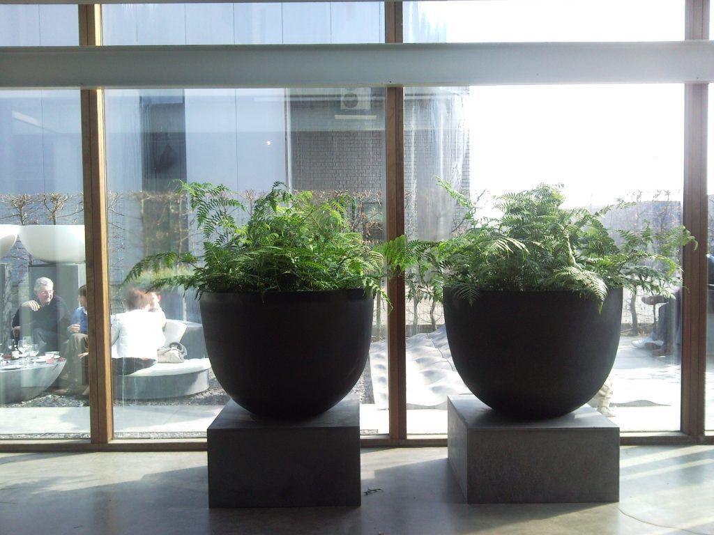 Terracotta potten buiten - Monique en anders