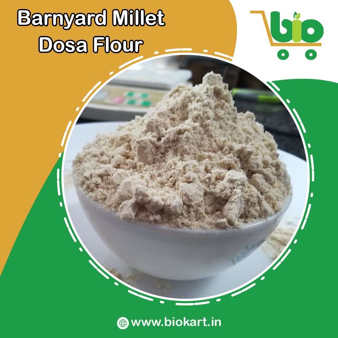 Buy Barnyard Millet Dosa Flour in 2020 Dosa, Rice dishes