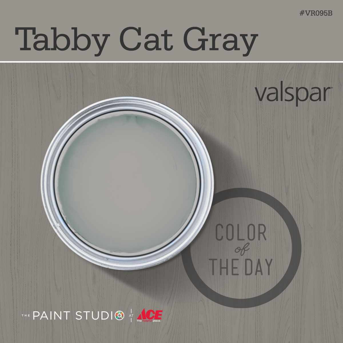 Color of the Day Tabby Cat Gray by Valspar