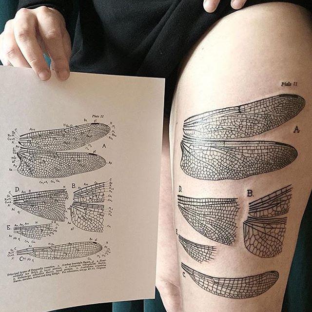 Some Line Work By Koral Camdenpiercingandtattoostudio Camden Nw1 Tattoo London England Colourtattoo Blacka Hand Tattoos Inspirational Tattoos Tattoos
