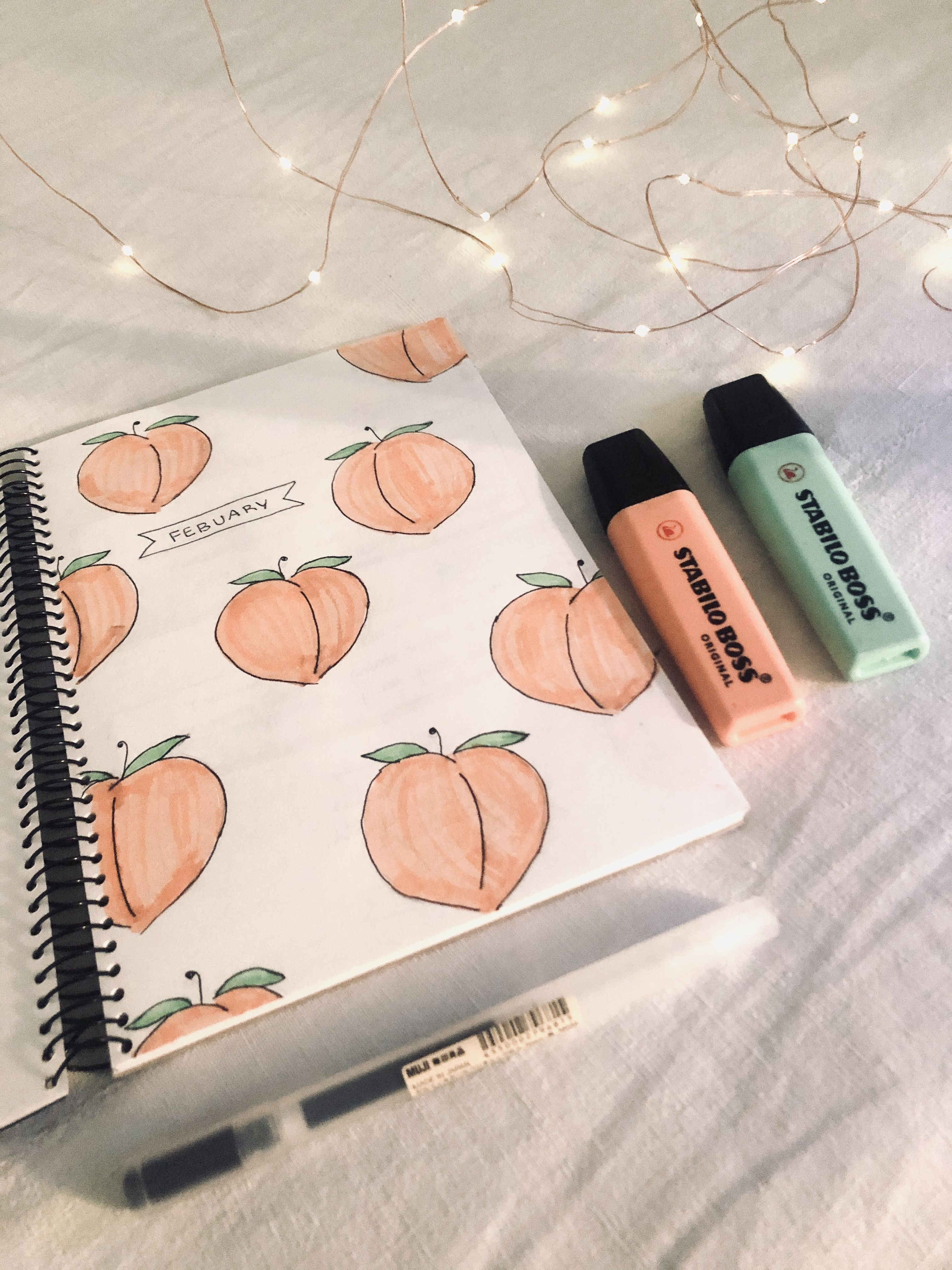 peach/ fruity  bullet journal front page - February bujo  ORIGINAL