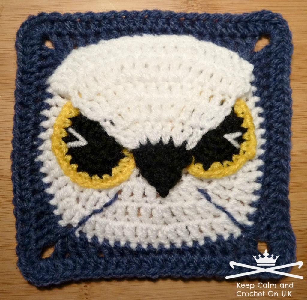 seahawks crochet patterns | Crocheting: Midnight Eagle Owl / Seattle Seahawk's