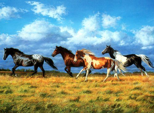 Horses In Green Pasture Leanin' Tree Blank Card