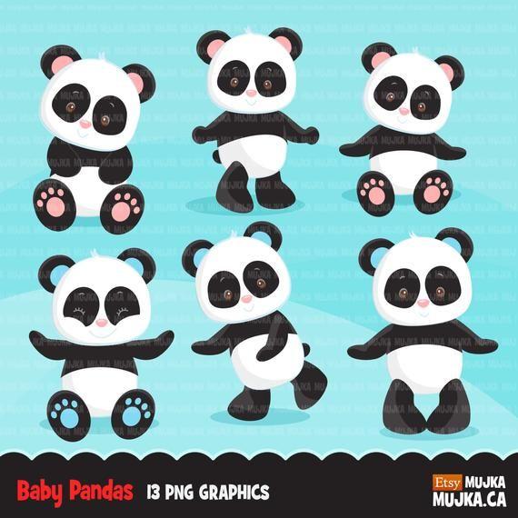 Baby Panda Clipart. Cute panda, wild animal graphics, baby animals, planner stickers commercial use, zoo animals, safari, jungle graphics #babypandas Baby Panda Clipart. Cute panda, wild animal graphics, baby animals, planner stickers commercial use, #babypandas