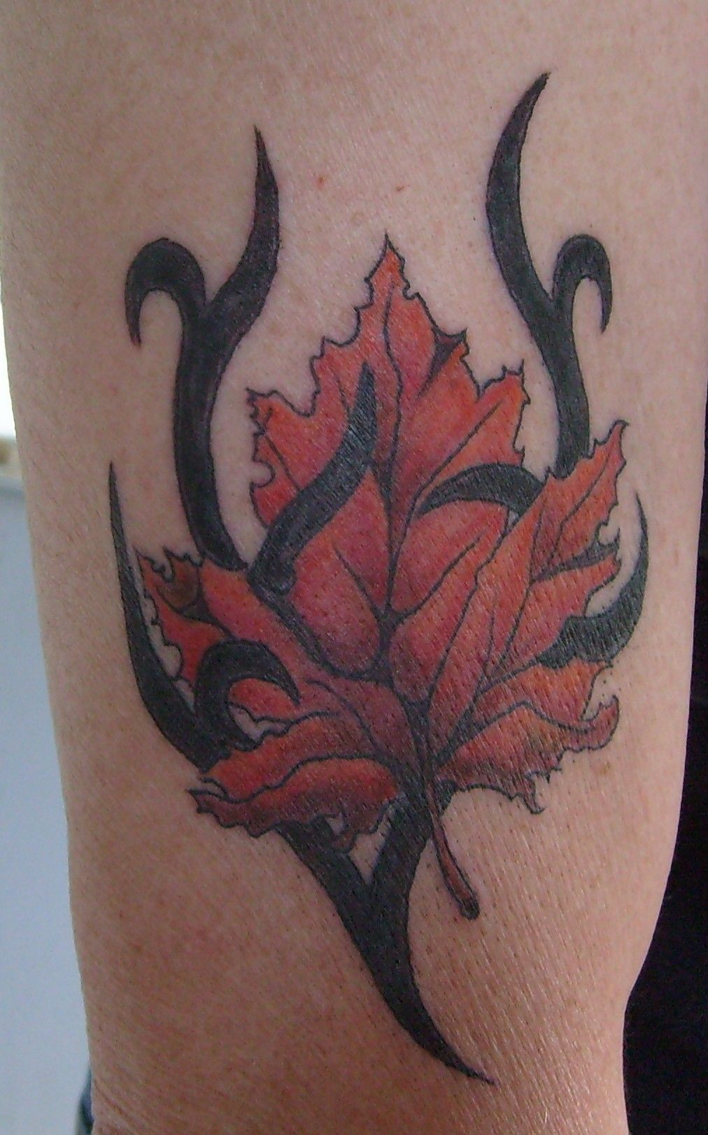 Name canadian flag ripping through skin tattoo designjpg pictures - Canadian Eh Proud Canadian Tattoos