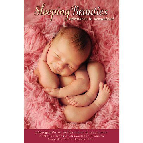 Sleeping Beauties 2013 Softcover Engagement Calendar Gods Little