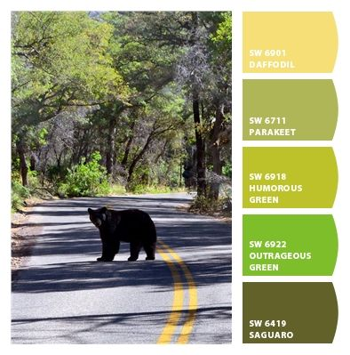 Paint colors from Chip It! by Sherwin-Williams | Chad Harris | Chiricahua National Monument
