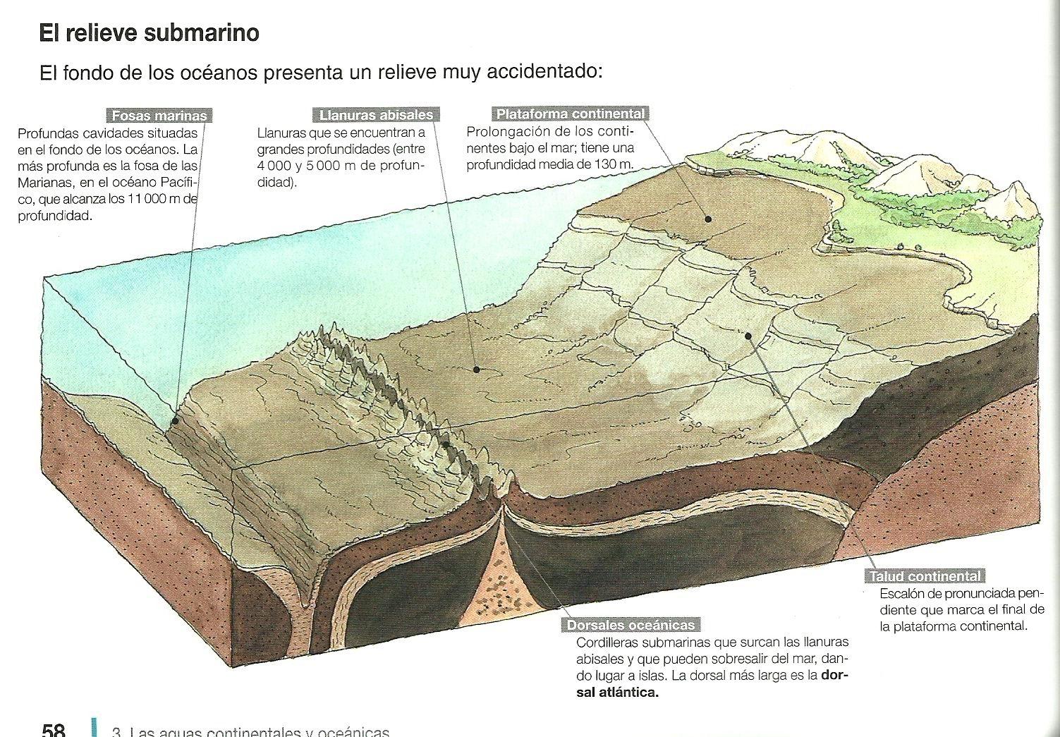 Resultado de imagen de relieve oceanico