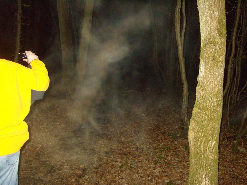 Strange ghostly mist photographed at Pluckley Screaming woods ...