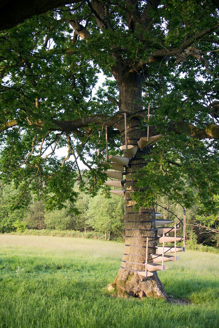 Strap A Spiral Staircase On Any Tree How Cool Is That Boredpanda With Images Building A Treehouse Backyard Trees Tree House
