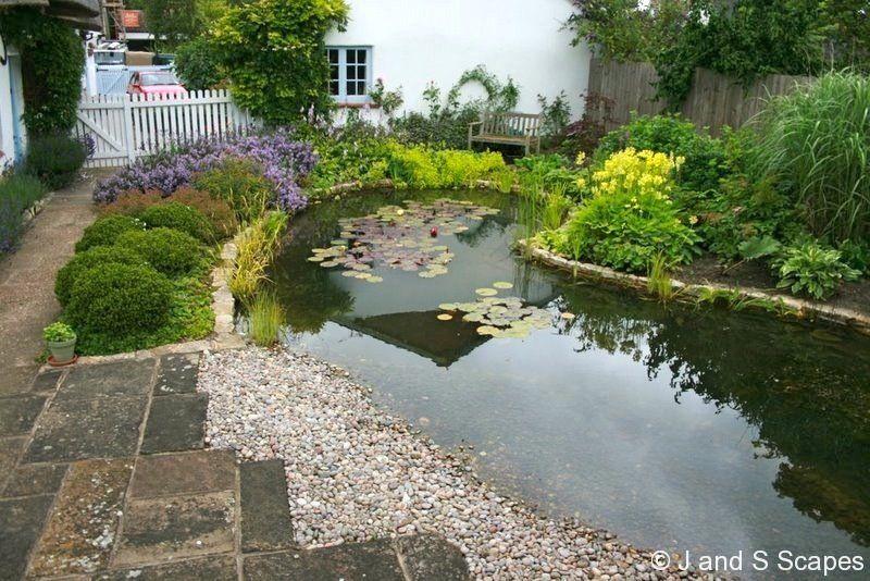 Garden ponds design and landscape thumbs 6 natural pond for Garden pond life