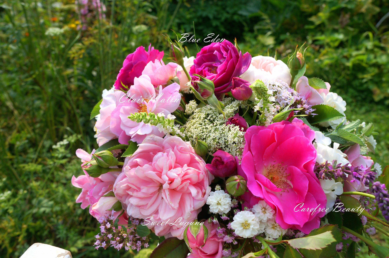 #bouquet #gardenroses #gardening #kyticeruzi #ruze #rose #flowers #flower #kvetiny