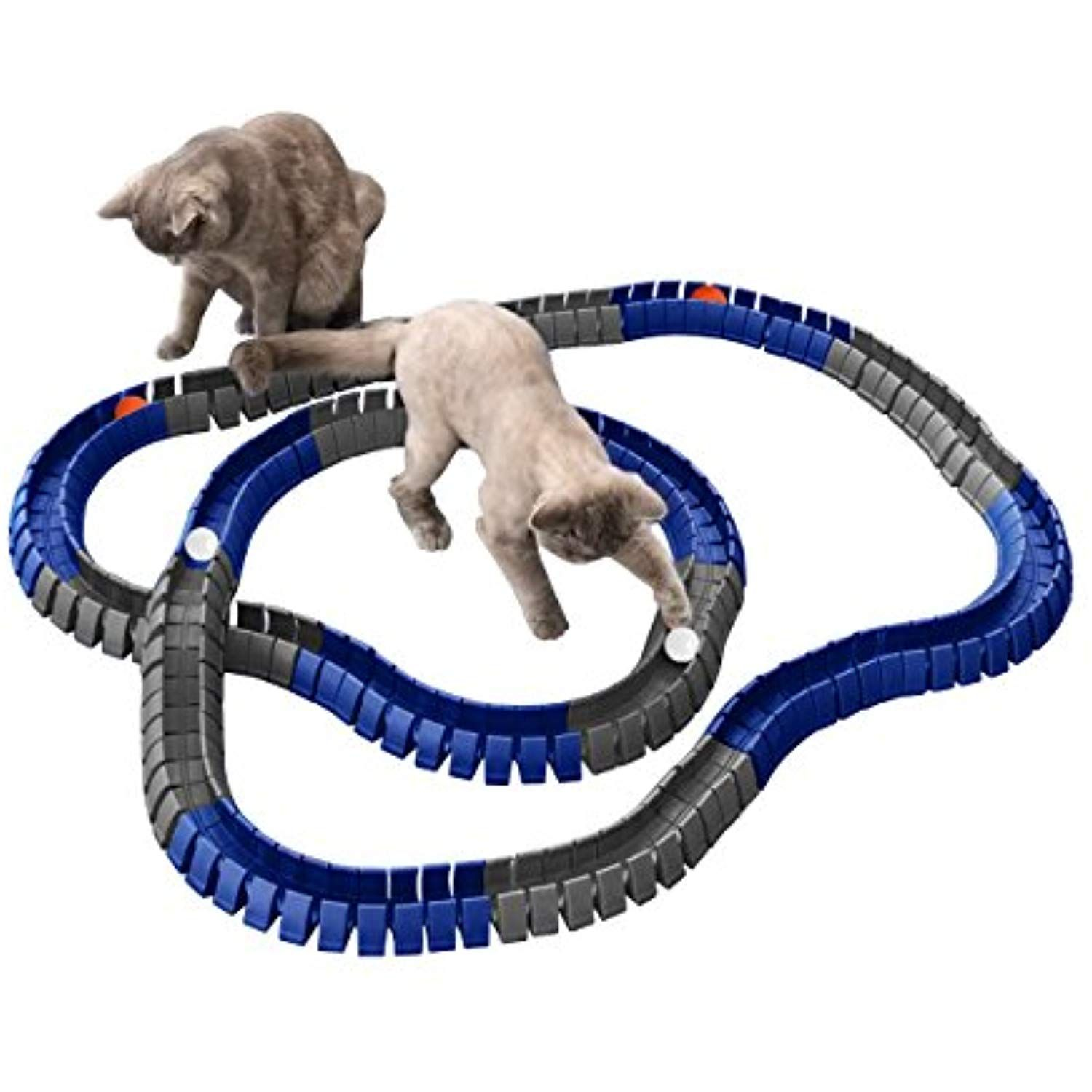 Magic Cat Track And Ball Toy Double Size For Cats Kittens Pets Kitties Consisting Of 16 Flexible Tracks And 4 Balls 8ft Of Blu Cat Toys Magic Cat Kittens