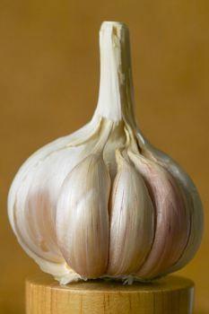 Garlic more effective in treating food poisoning than antibiotics!