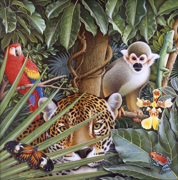 Jungle Http Www Braldtbraldsstudio Com Illustrations Html Animal Art Illustration Art Tropical Illustration