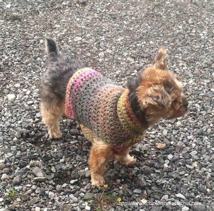 Quick & Easy Small Dog Crochet Sweater #dogcrochetedsweaters