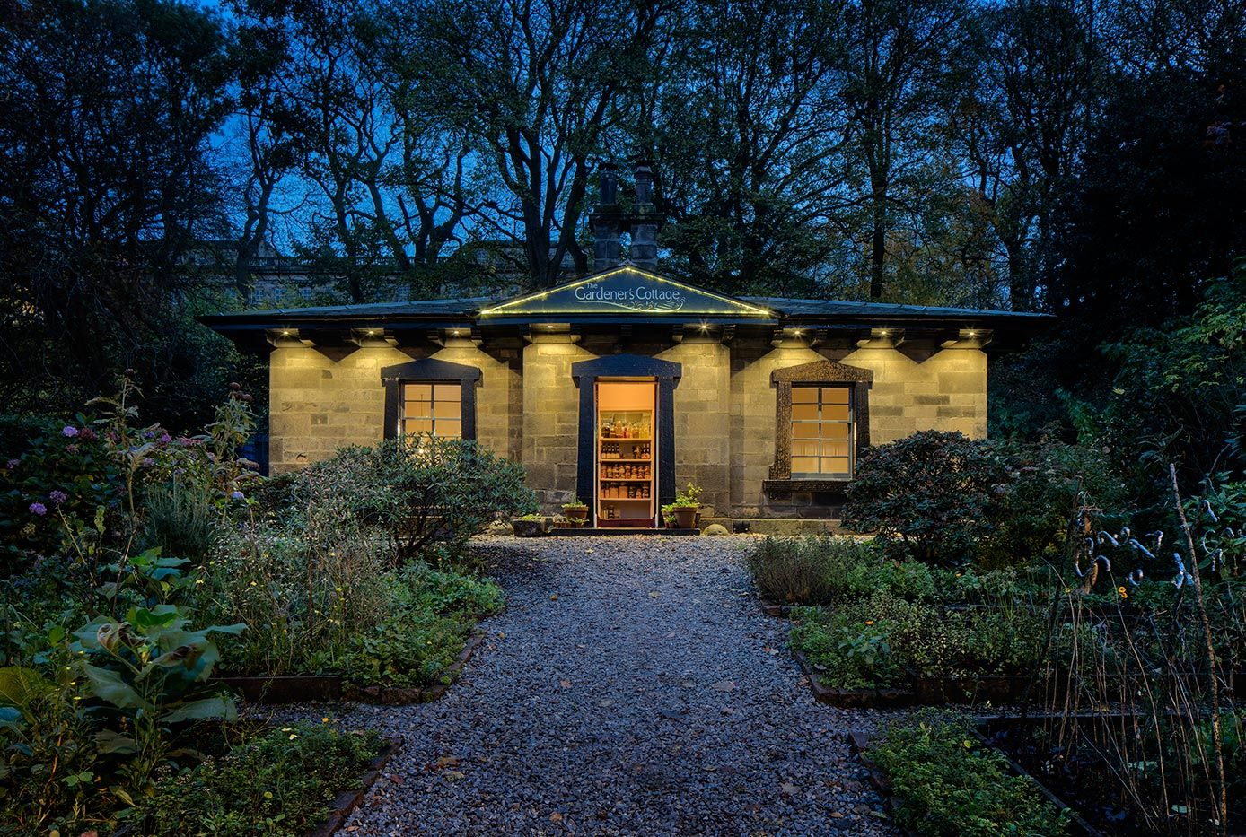 Garden Design In Edinburgh Scotland Craiglockhart Succulent Landscape Design Garden Design Succulent Landscaping