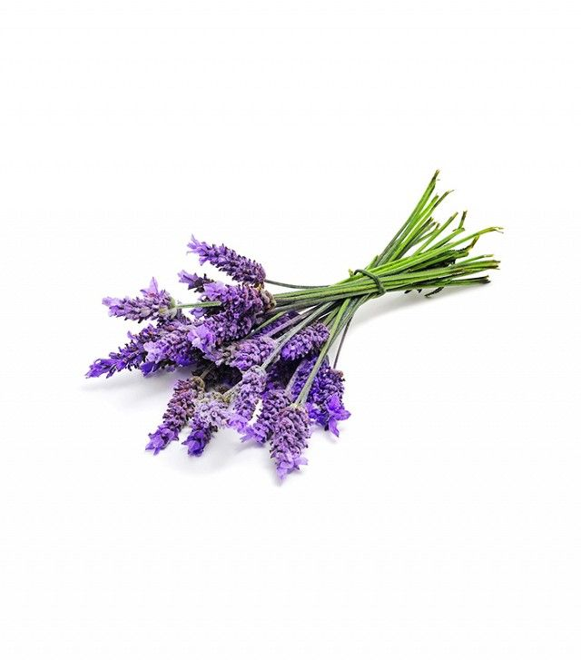 Get a Whiff of Lavender