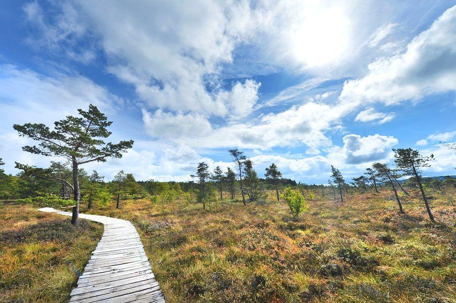 Rhon Sehenswurdigkeiten Top 11 Sehenswurdigkeiten In Der Rhon 2020 In 2020 Sehenswurdigkeiten Ausflug Dreilandereck