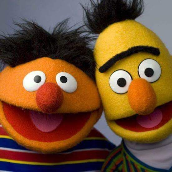 241 Best Muppet Greatness Images On Pinterest: Are You More Like Bert Or Ernie?