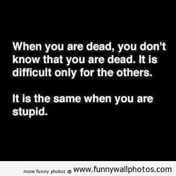 stupid, hehehe.