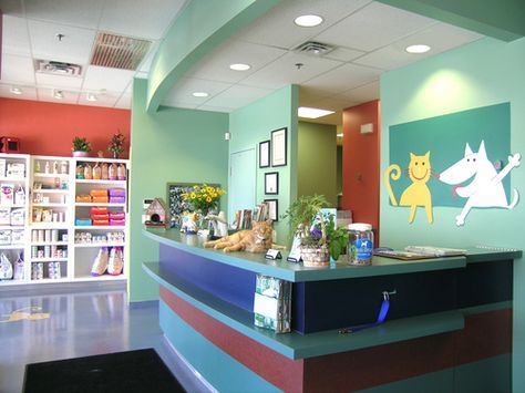 Vet Clinic Interior Design Thank You Visiting Our Hospital