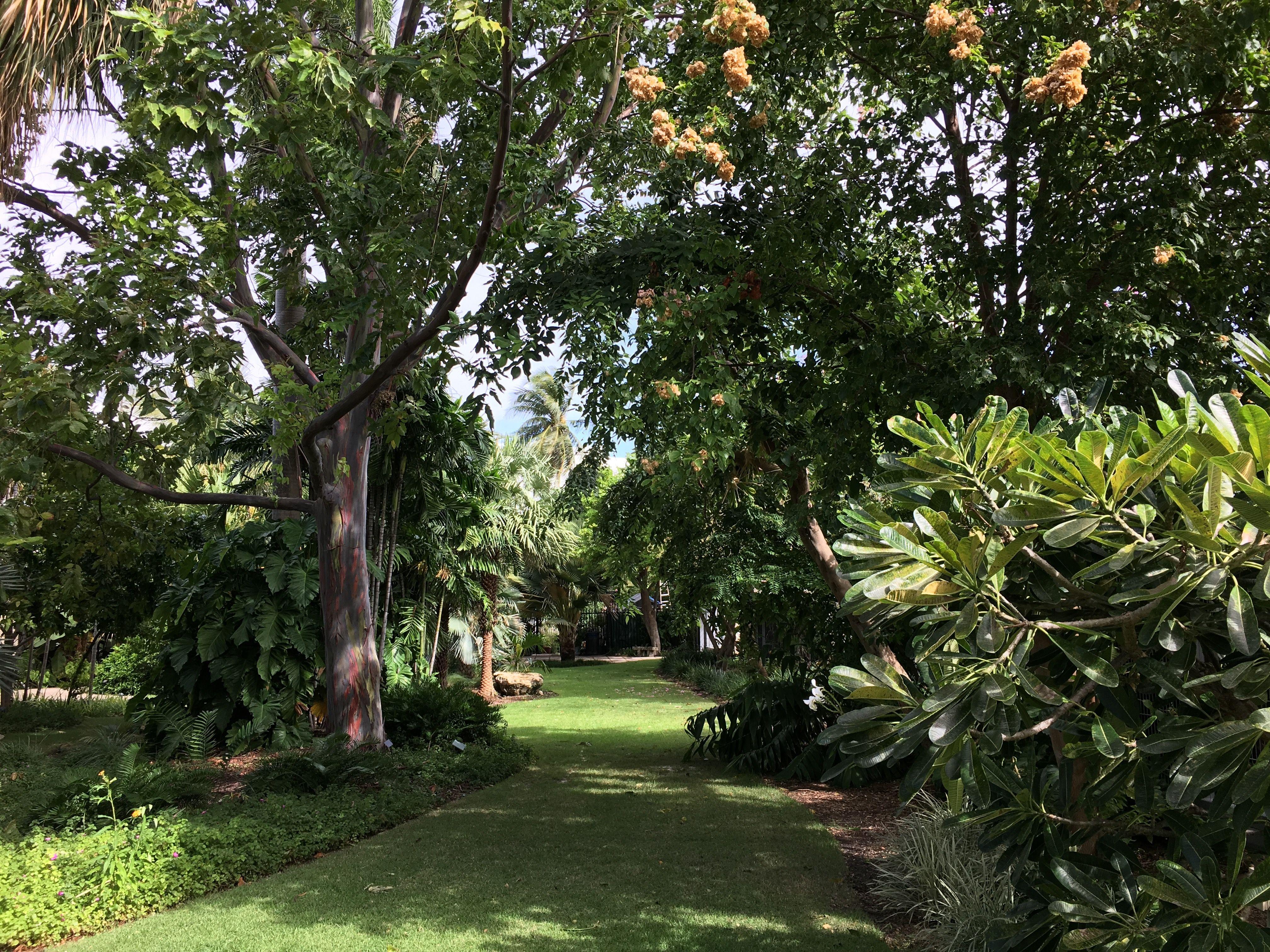 Miami Beach Botanical Garden (Florida Travel , Discover Florida ...