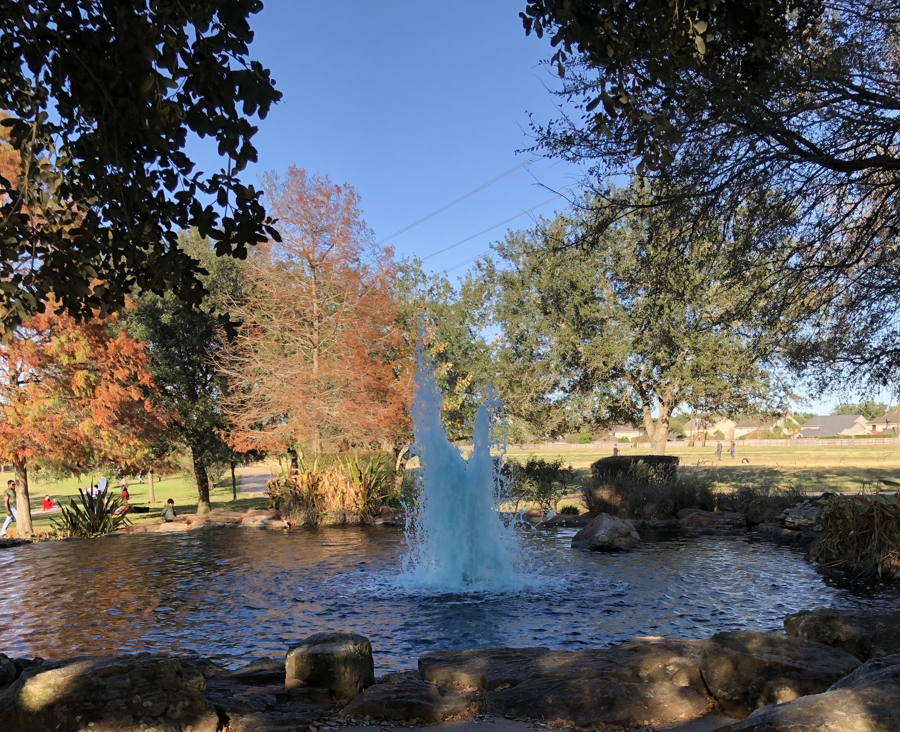 Oyster Creek Park | Oyster creek park, Outdoor, Favorite ...