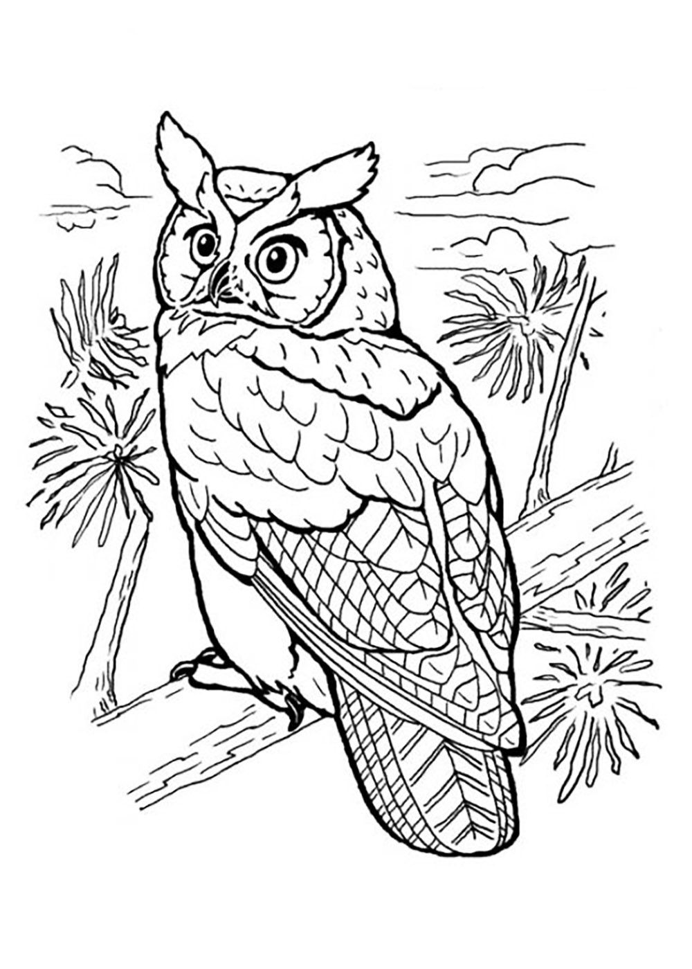 Owl Full Of Details Animals Coloring Pages For Kids Coloring Pages For Adults Just Color Owl Coloring Pages Bird Coloring Pages Animal Coloring Pages