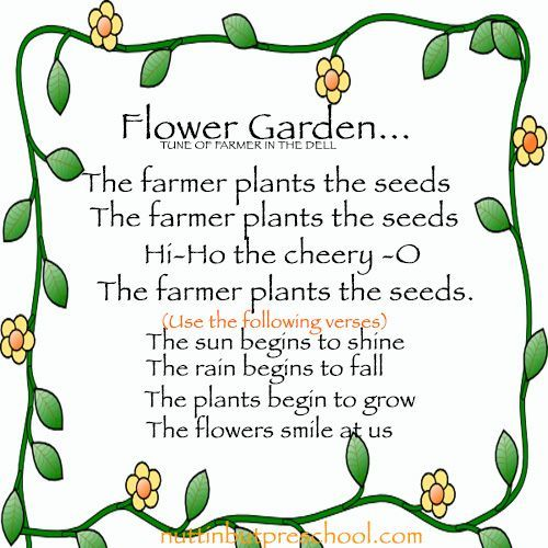 Flower Begins To Grow Preschool Childrens Song Growing Seeds Flowergarden