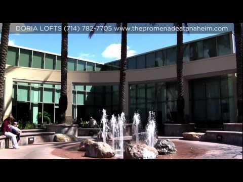Doria Loft Apartments Anaheim Apartment