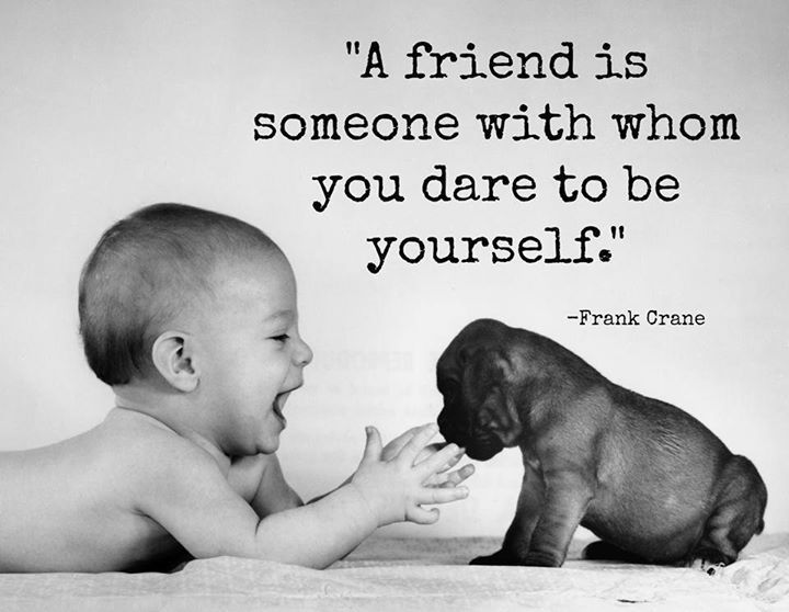 A Friend Quotes Quote Friends Baby Best Friends Dog Kid Bff Pets Friendship Quotes Encouragement Quotes Friendship Quotes Bible Quotes