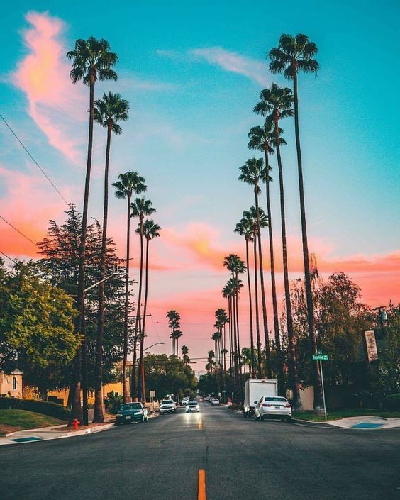 Tumblr Wallpapers California Vacation Travel Coconuttree California Wallpaper Sky Aesthetic Tumblr Wallpaper