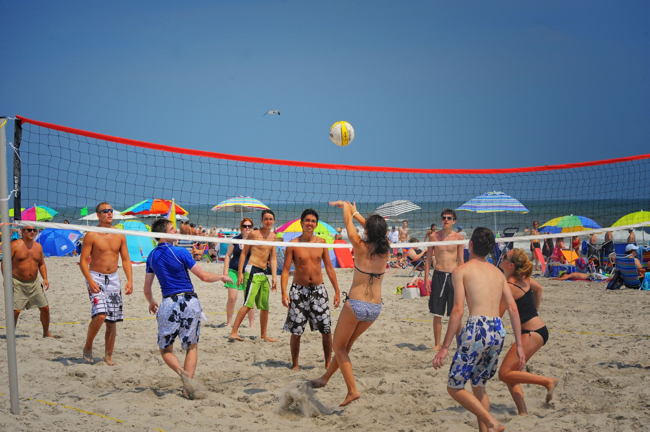 Beach Volleyball Cape May Point Ocean City Jersey County New